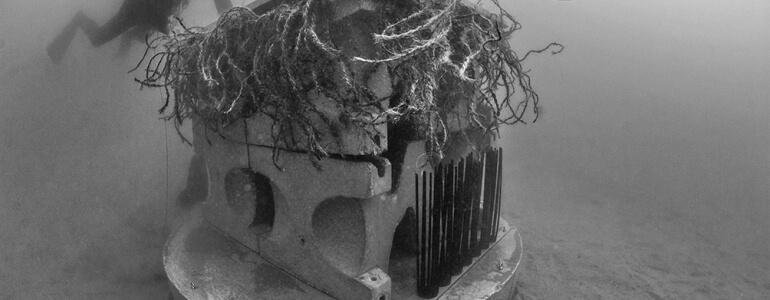Immersion-mouillages-écologiques-Agde-770x300_1_1