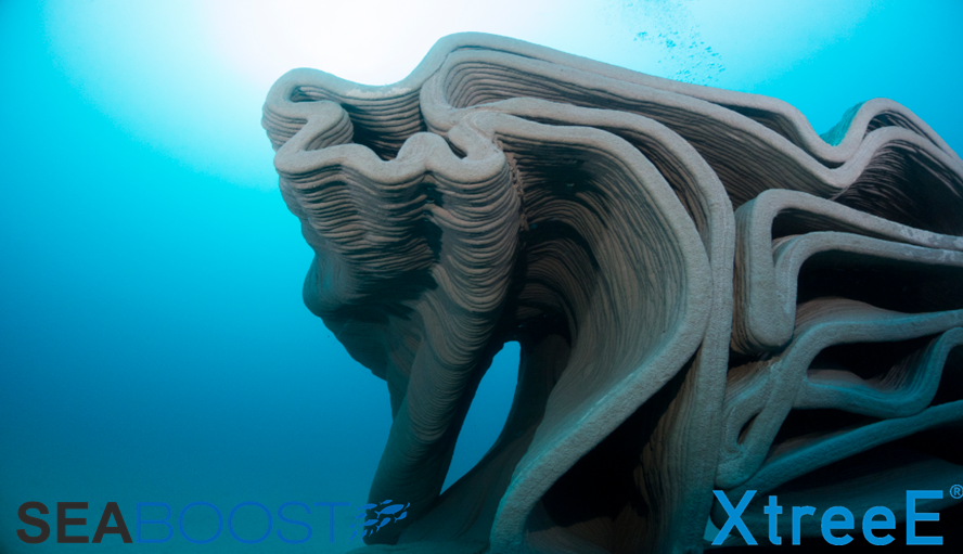 3D béton coralligène Seaboost XTreeE Julien Dalle 2