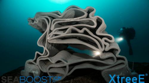 imprimante-3D-béton-récif-artificiel-Seaboost-XTreeE-Julien-Dalle-500x280_1_1