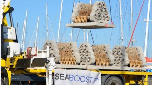 seaboost-3-500x280_1_1