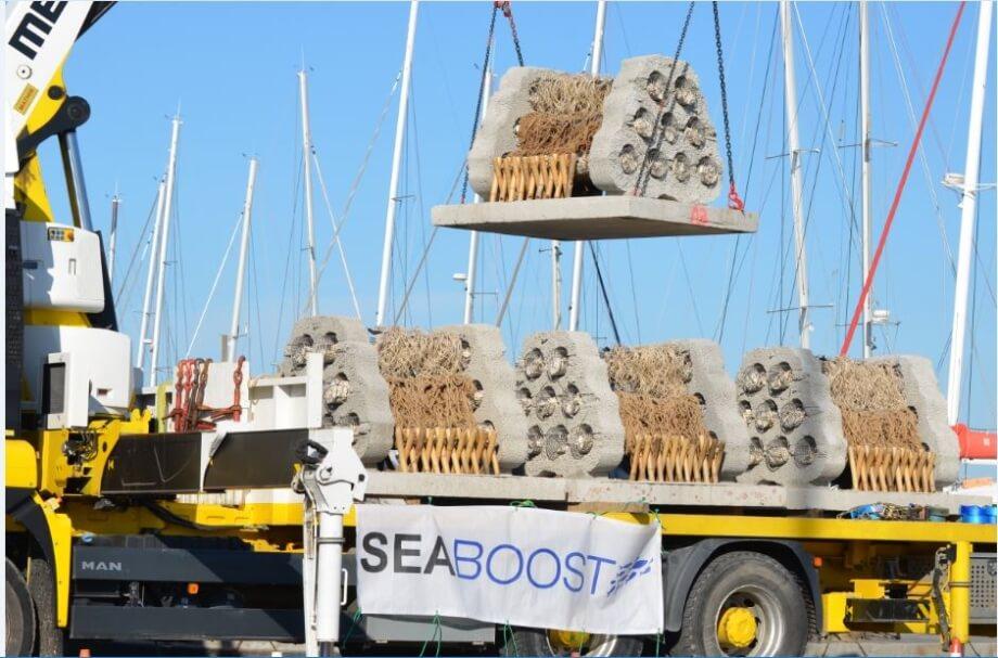 seaboost-3-920xauto_1_1